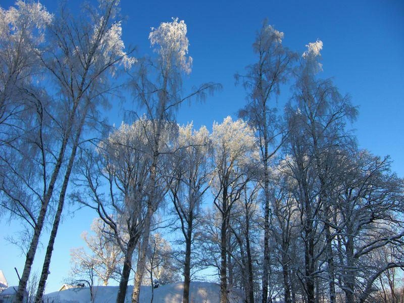 JUL + Snö 028